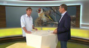 Warnung vor Vogelsterben - BR Mediathek