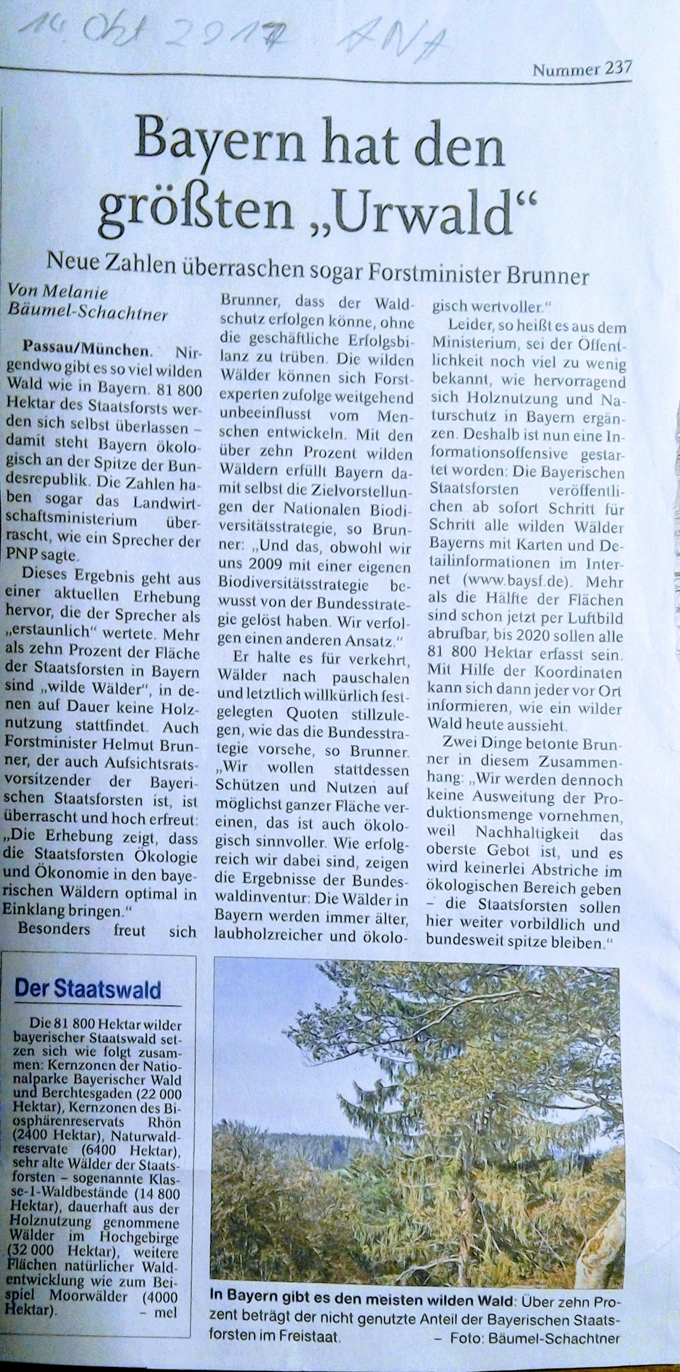 10% von Bayerns Wälder als Urwald?