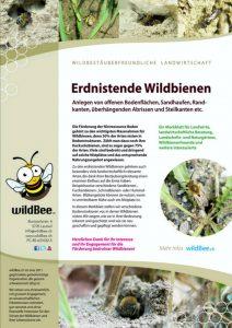 Nisthilfen bauen für erdnistende Wildbienen
