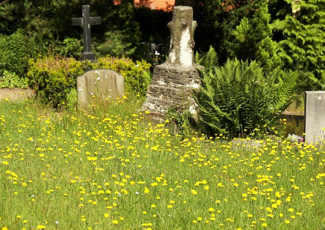 Ruhe für die Toten, Leben für die Natur