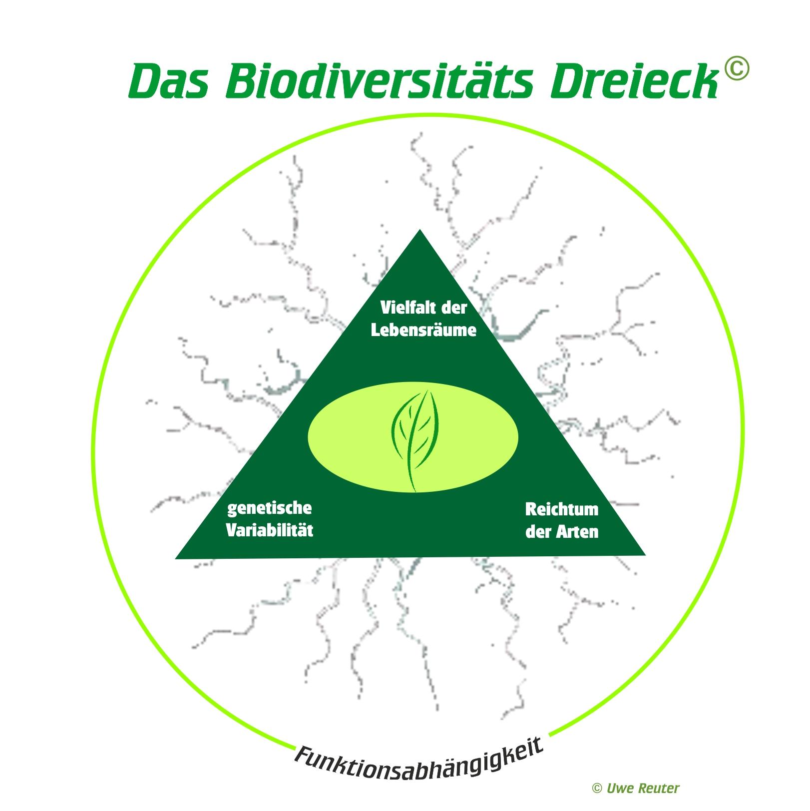 Die Dreifaltigkeit der Biodiversität