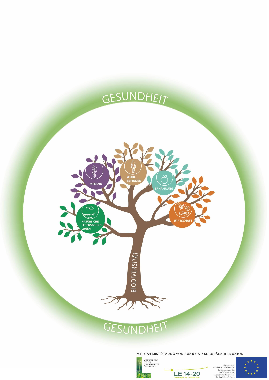 """Zusammenhänge erkennen – Modelle """"Biodiversität und Gesundheit"""""""